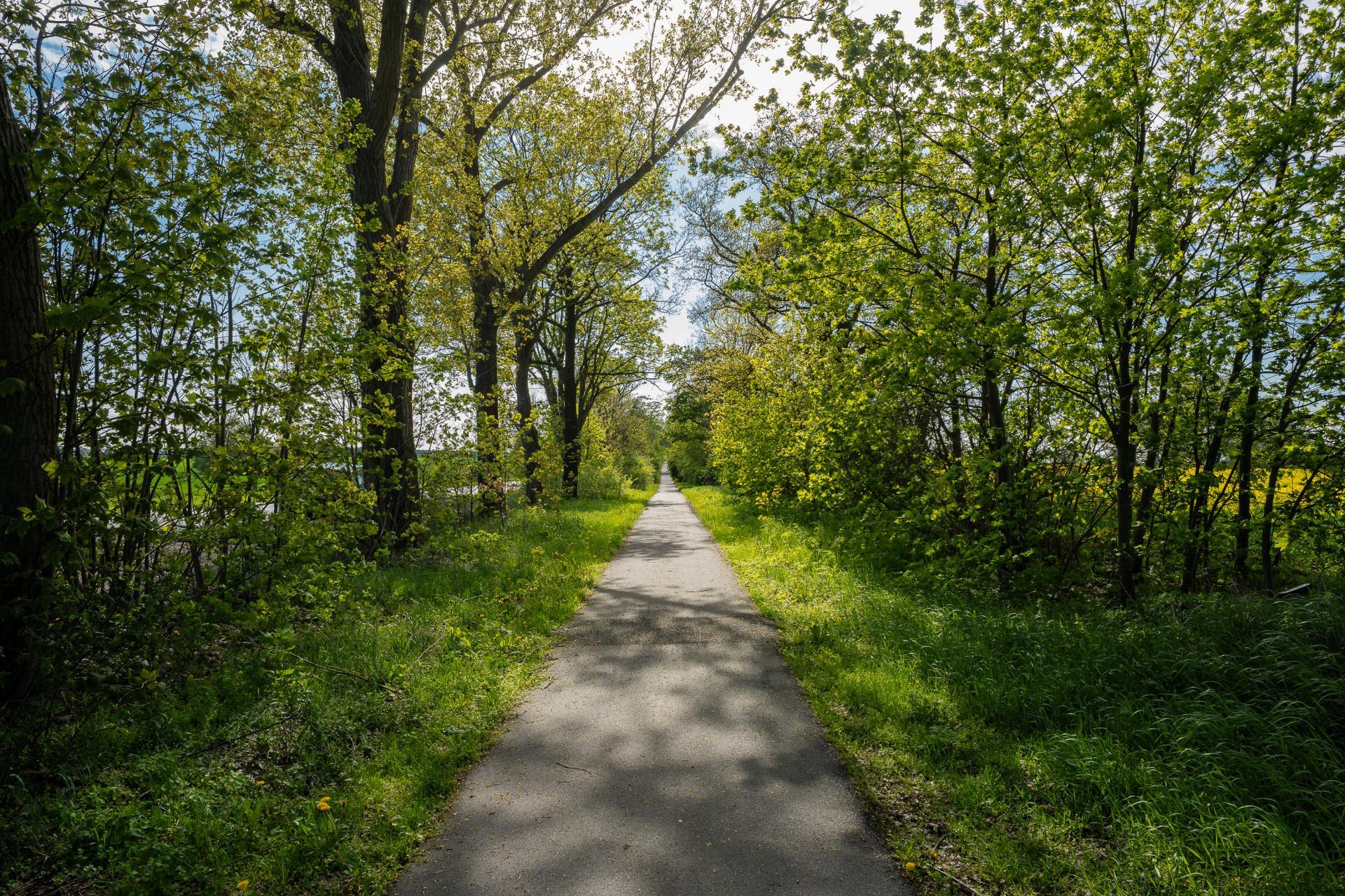 Radweg am Börnicker Landweg