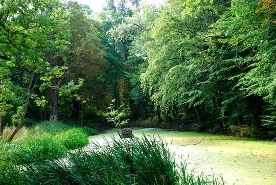 Der Teich heute - mit dem Fundament der Neptunstatue