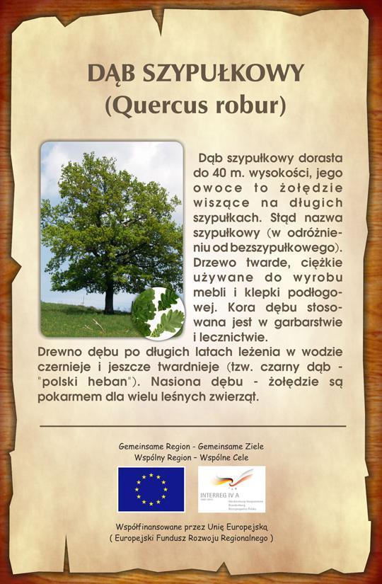 Tablica informacyjna w parku w Rusowie