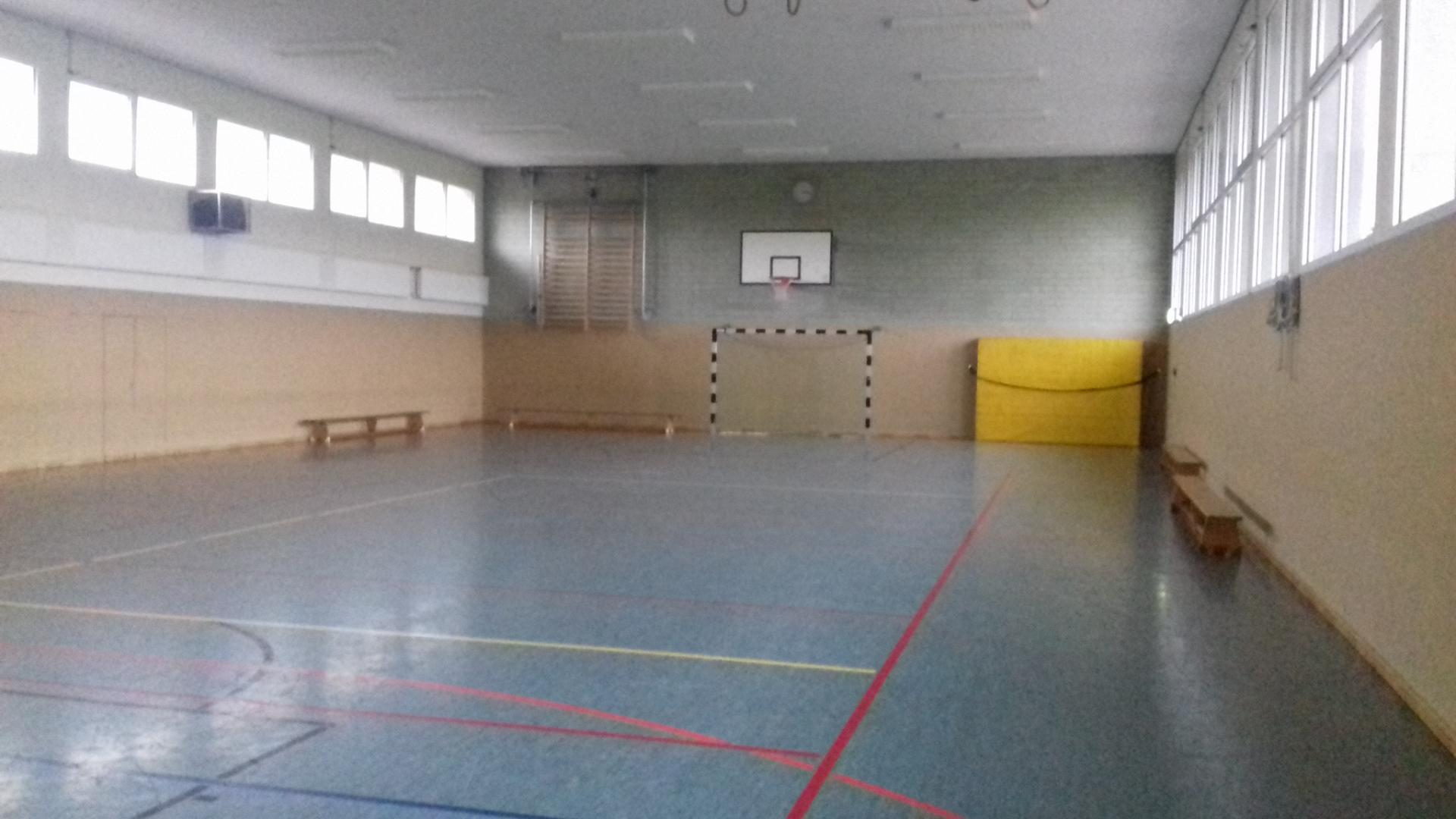 Einfachturhalle innen