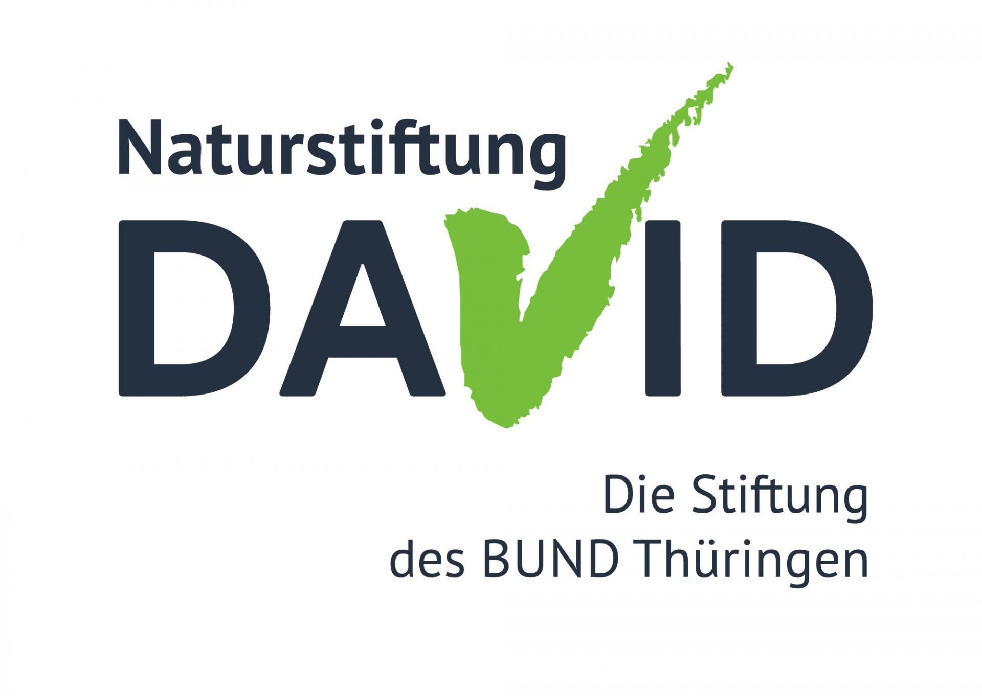 David Stiftung