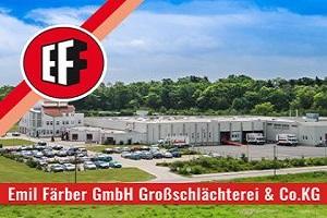Faerber-Belgern-Halle-mit-Logo-300x225