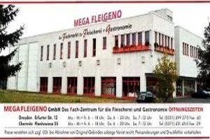 Megafleigeno