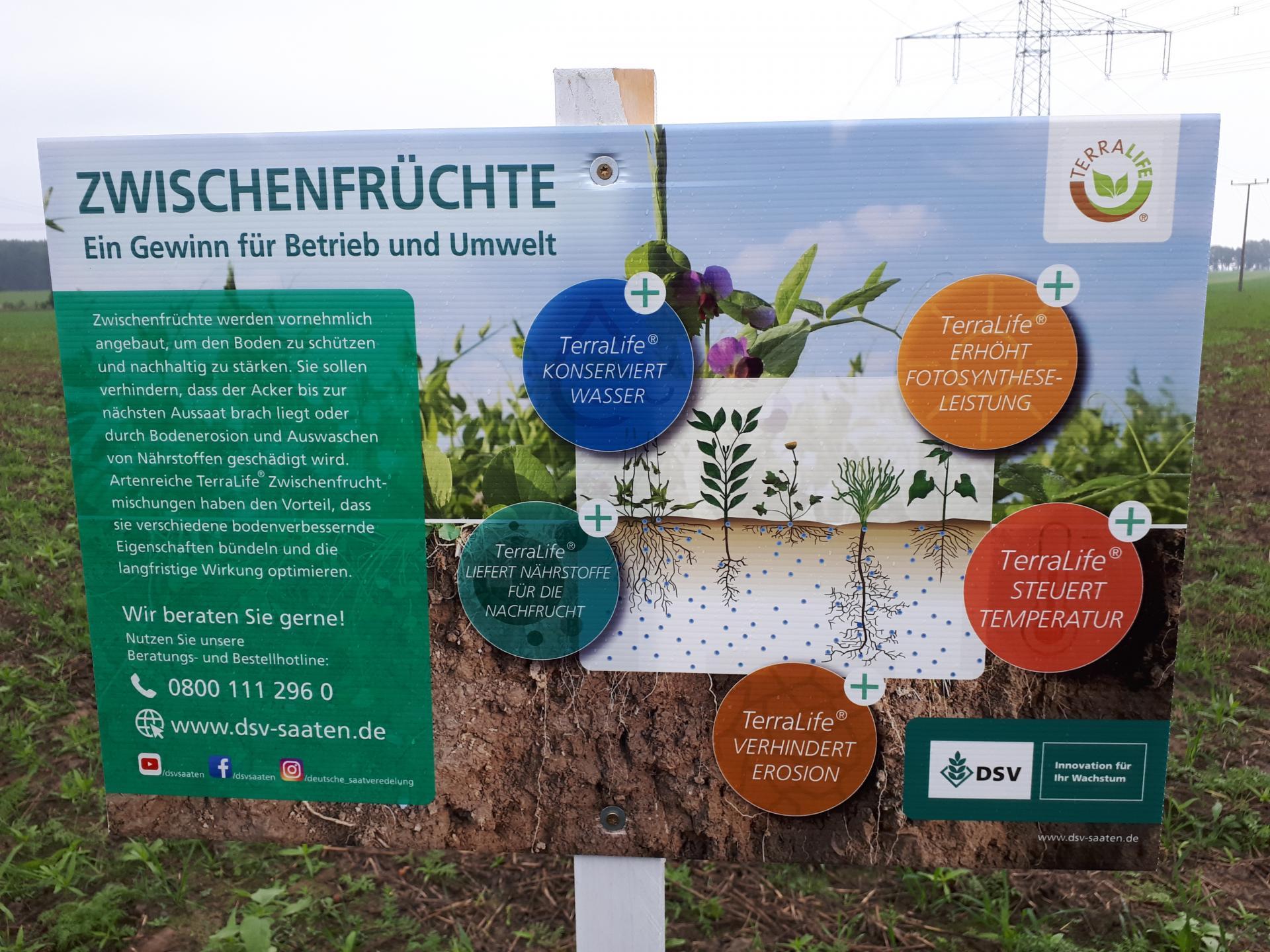 Lehrunterweisung Zwischenfruchtanbau