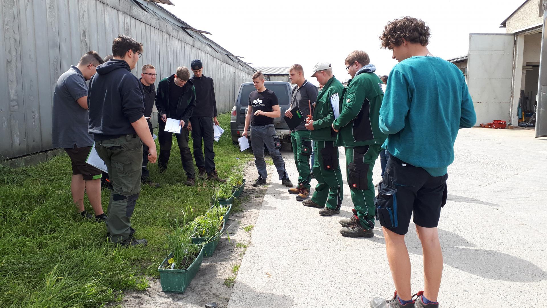 Lehrunterweisung Pflanzenschutz