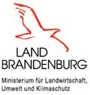 MLUK Logo