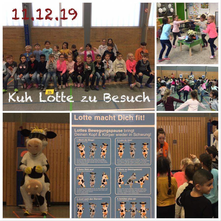 2019-12-11-Kuh Lotte