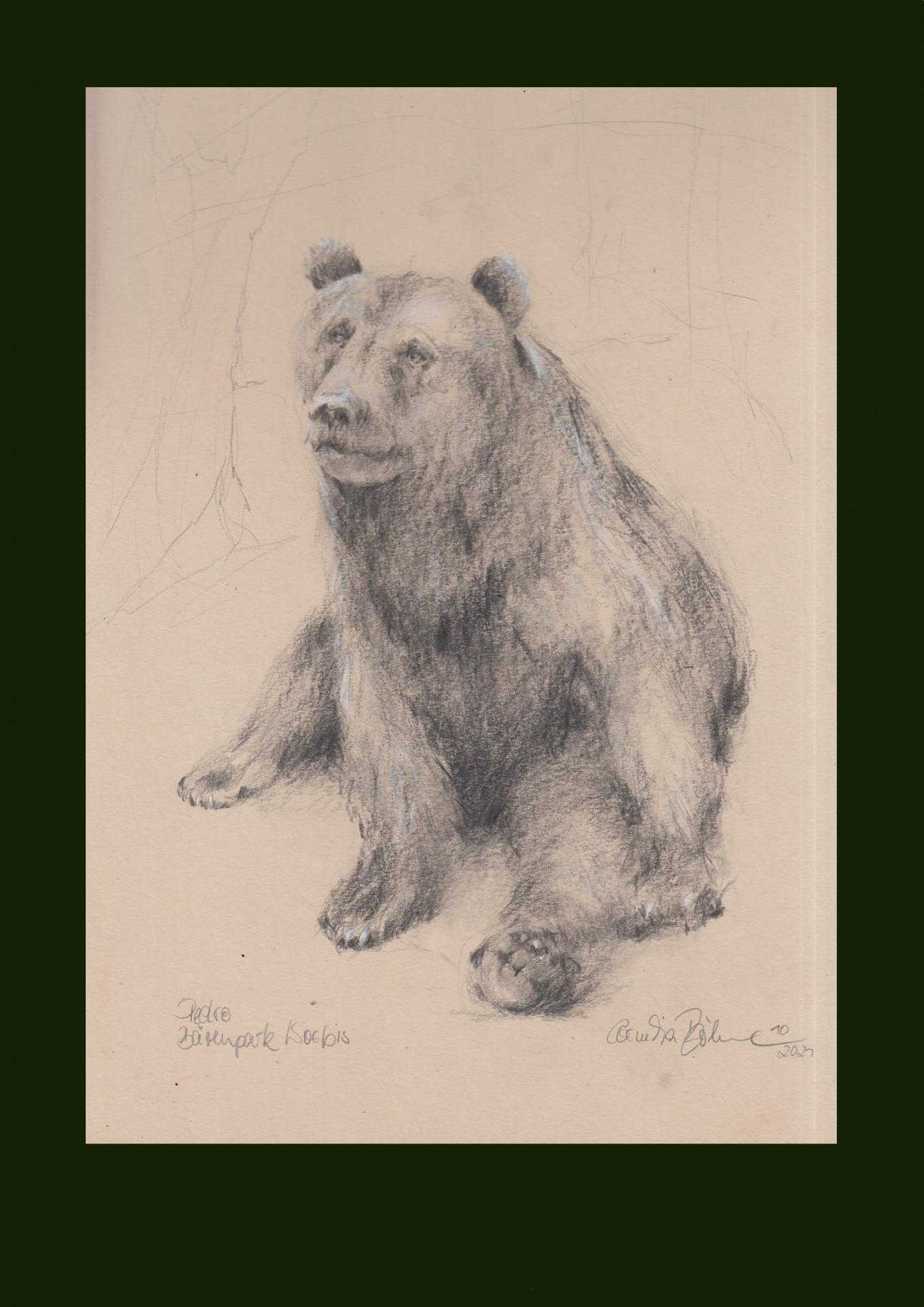 Studie PEDRO Alternativer Bärenpark Worbis