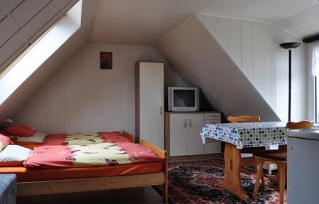 Zimmer3.jpg