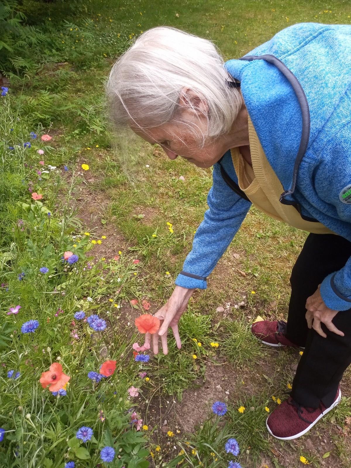 Frau beim Blumen pflücken