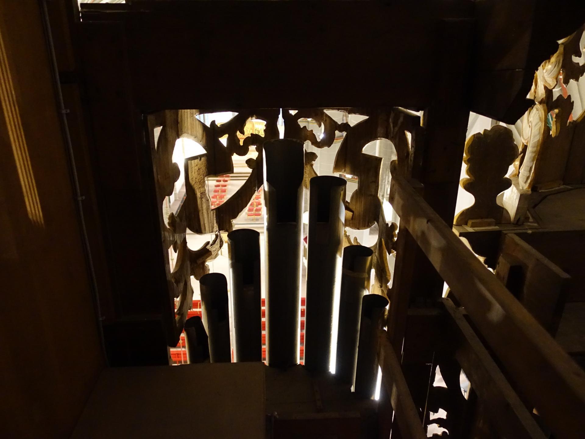 Ganz oben aus der Orgel mit Pfeifen im Vordergrund und roten Bänken im Untergrund
