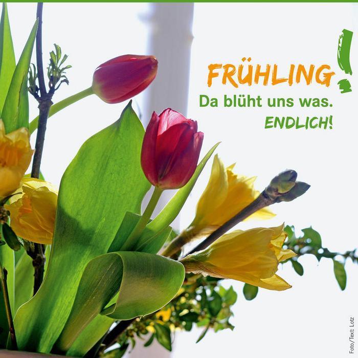 FRühling-endlich