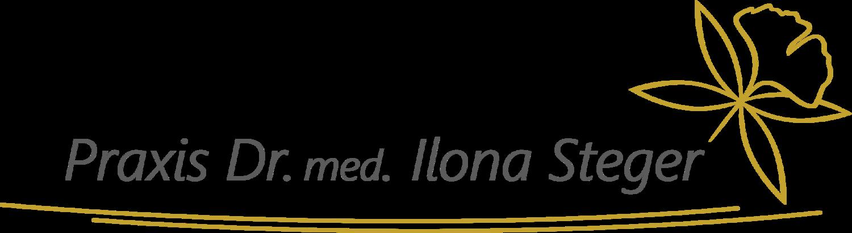 Logo Steger