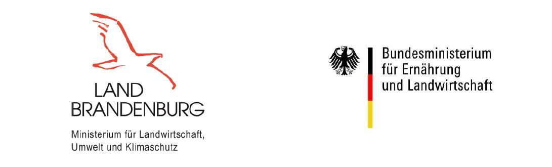 Logo FV GSS