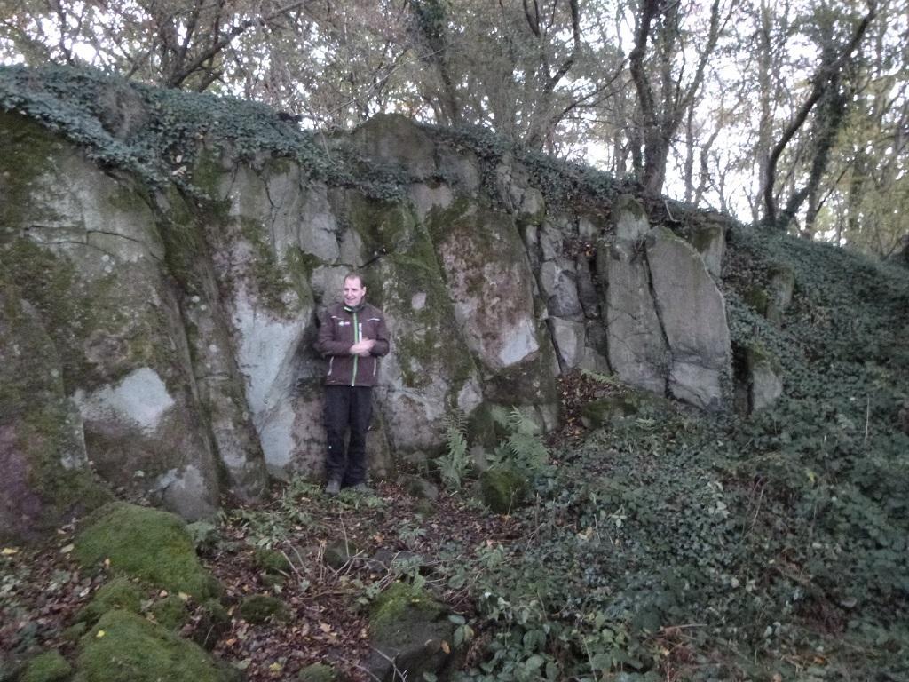 Basaltsäulen im Inneren der Geologischen Baumhecke
