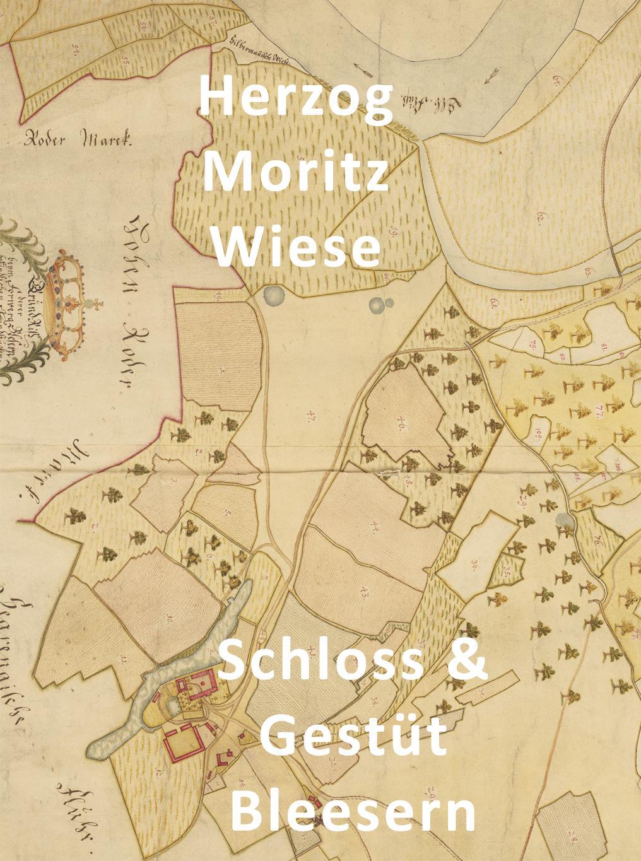 Herzog Moritz Wiese