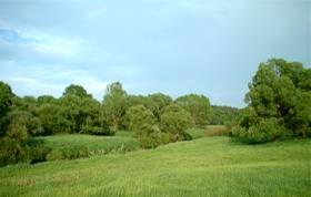 Neißelandschaft bei Rothenburg