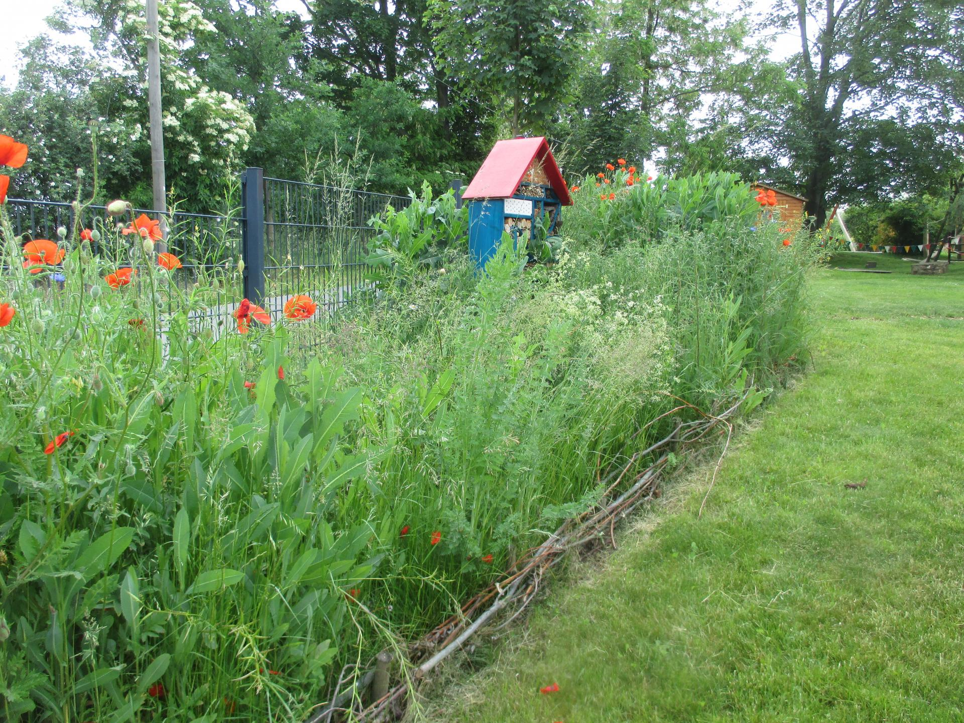 Blühwiese mit Insektenhotel 2020