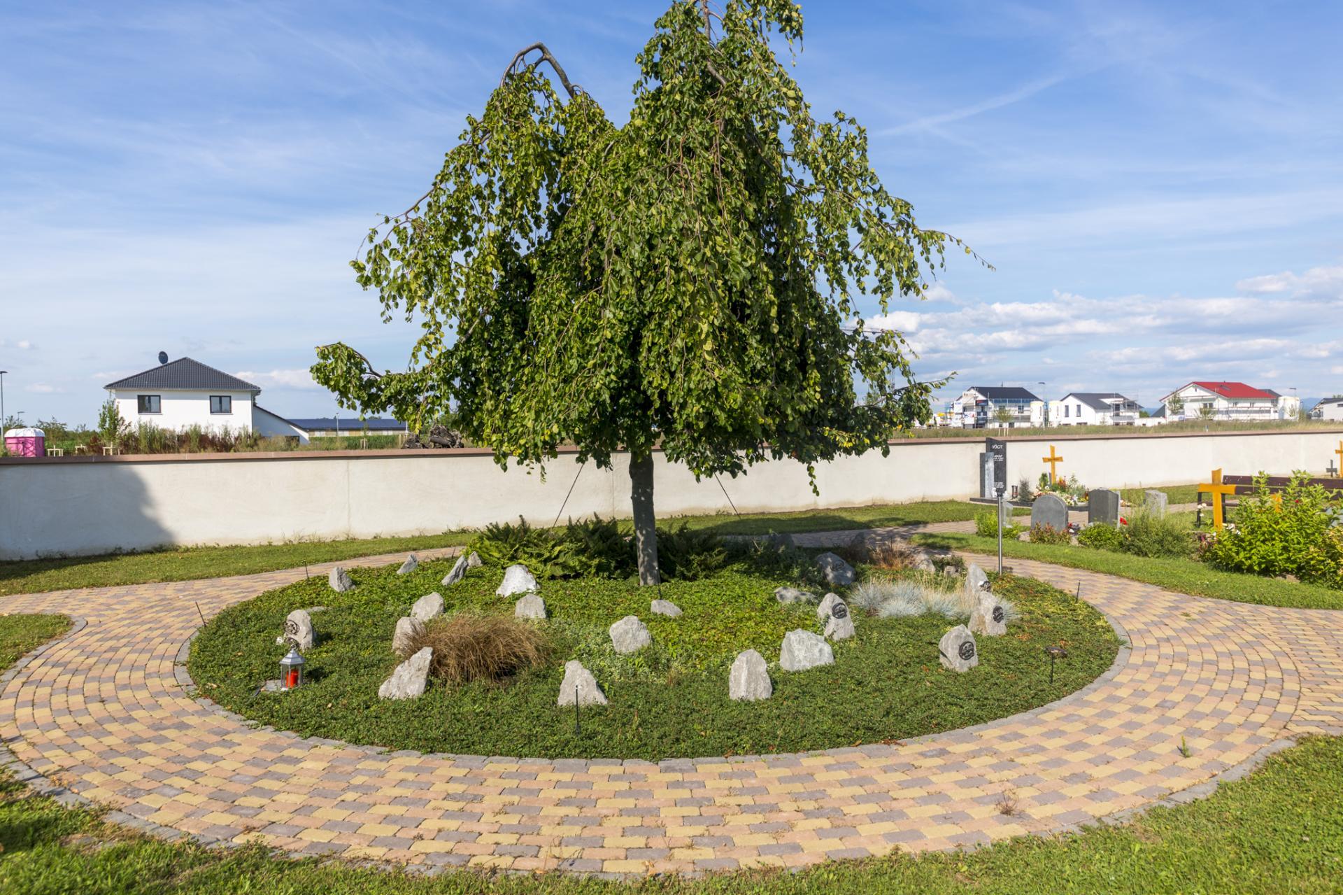 Friedhof - Gärtnergepflegtes Grabfeld