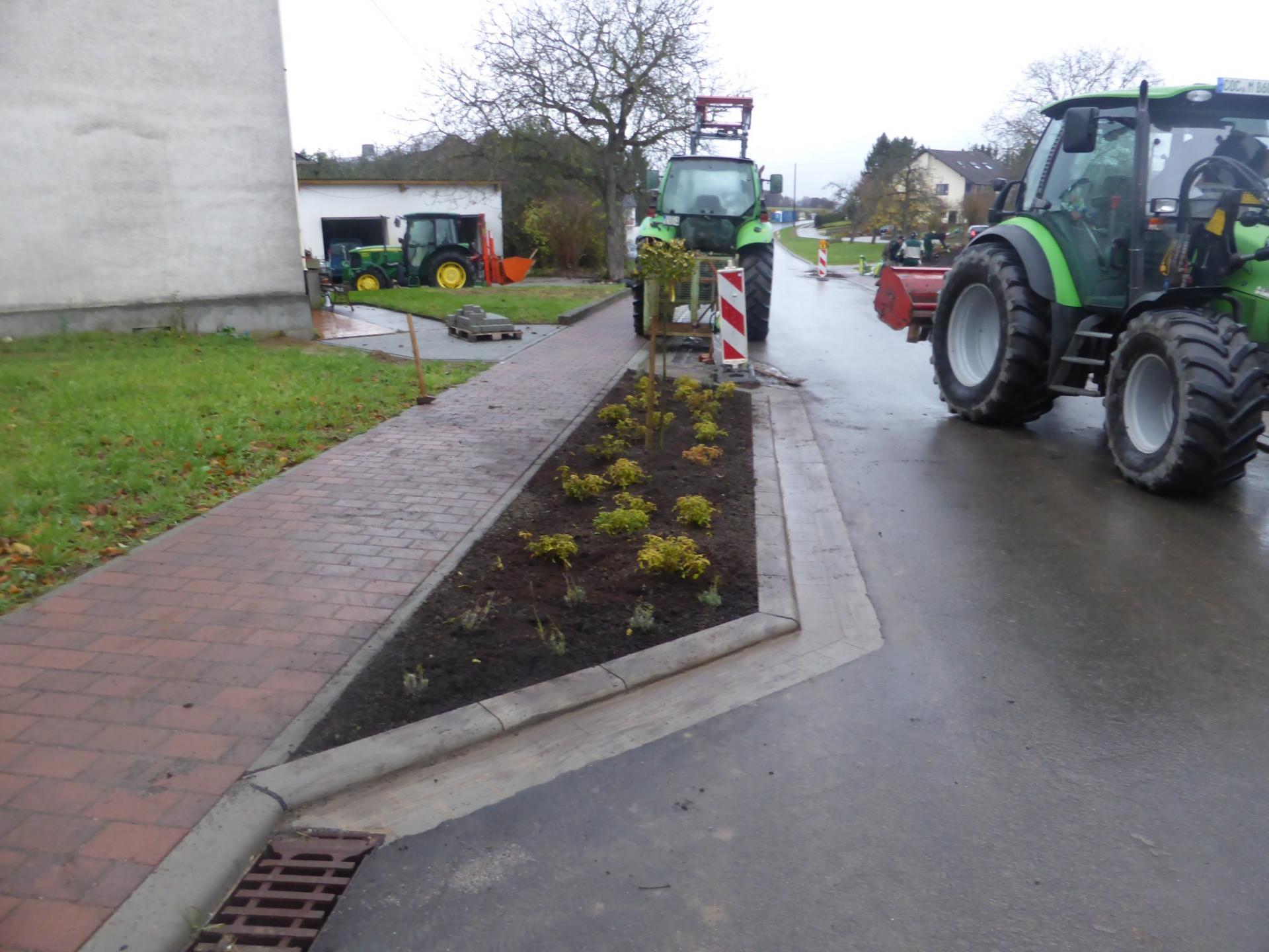 Hauptstraße wurde bepflanzt