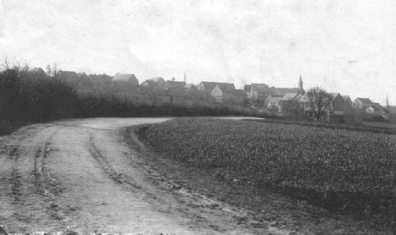 Die alte Strasse nach Petershausen