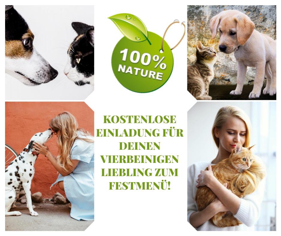 Kostenlose Futterprobe für Hunde und Katzen von Xantara
