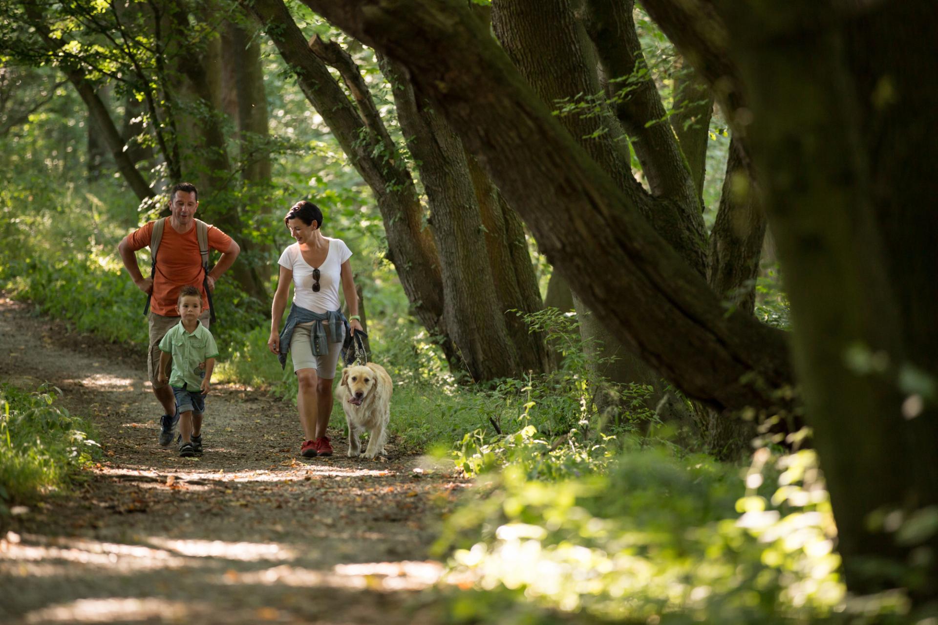 Mit der ganzen Familie wandern gehen, nur eine der zahlreichen Möglichkeiten zur Erholung und Entspannung, die der Nationalpark bietet. Foto: Tino Sieland
