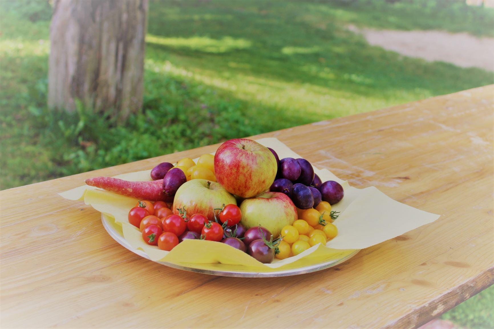 Gesundes Obst - Naturaktionstag