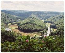 Ardennen Landschaft