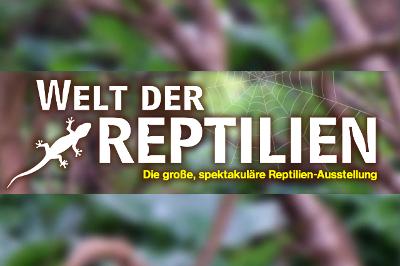 reptilien_400
