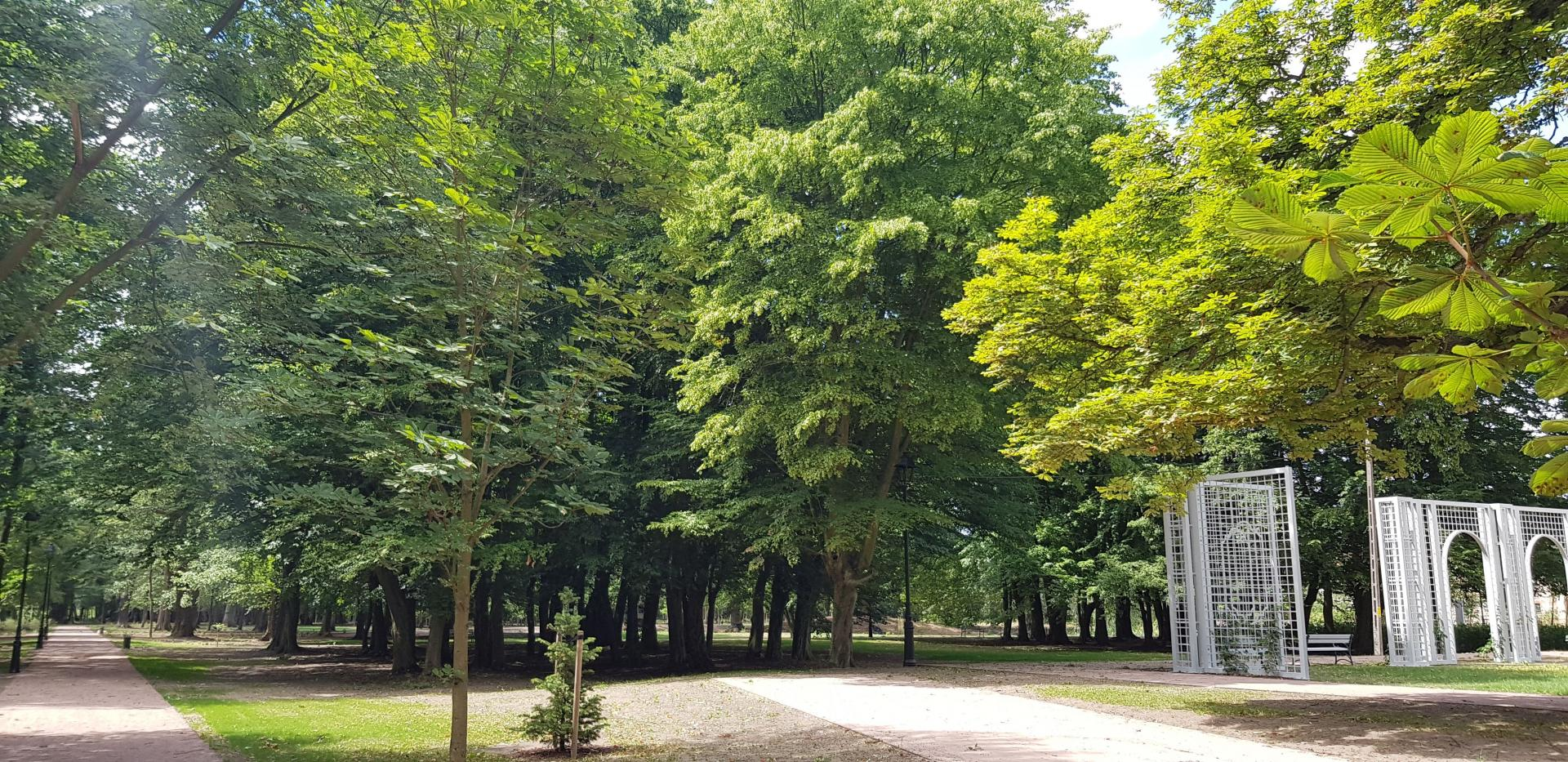 Czerwiensk Park