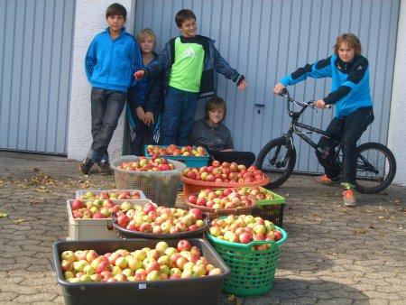 sooo viele Äpfel