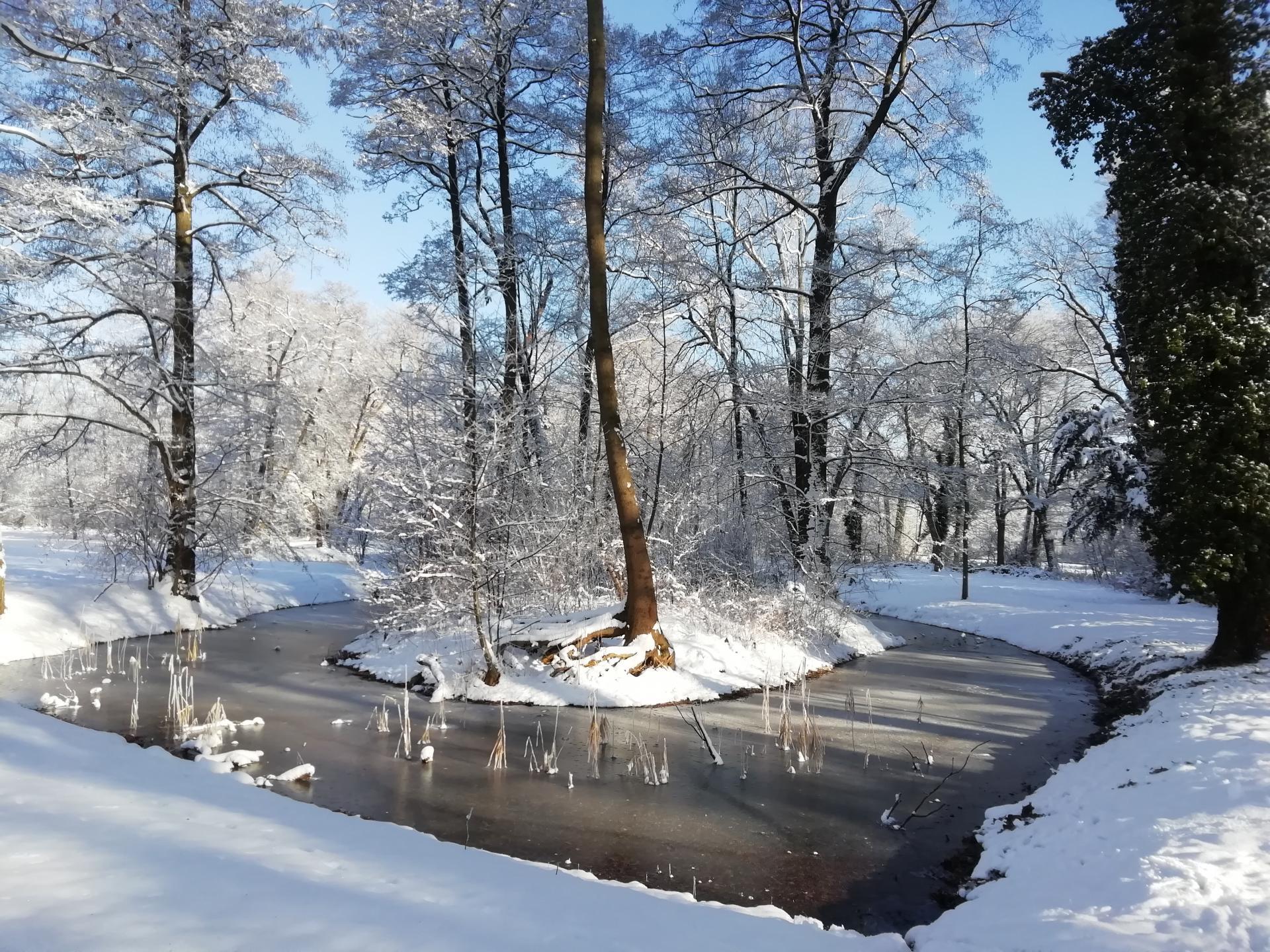 am Teich - der Park wurde im Jahr 1883 nach Plänen von Peter Josef Lenne`angelegt. Er lädt zu jeder Jahreszeit zu einem ausgedehnten Spaziergang ein. Die Fläche beträgt mehr als 20 ha.