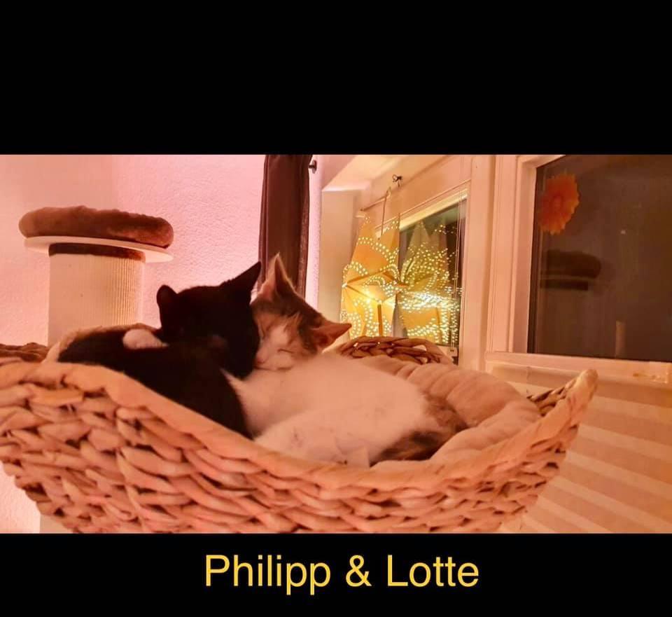 Lotte und Phillip