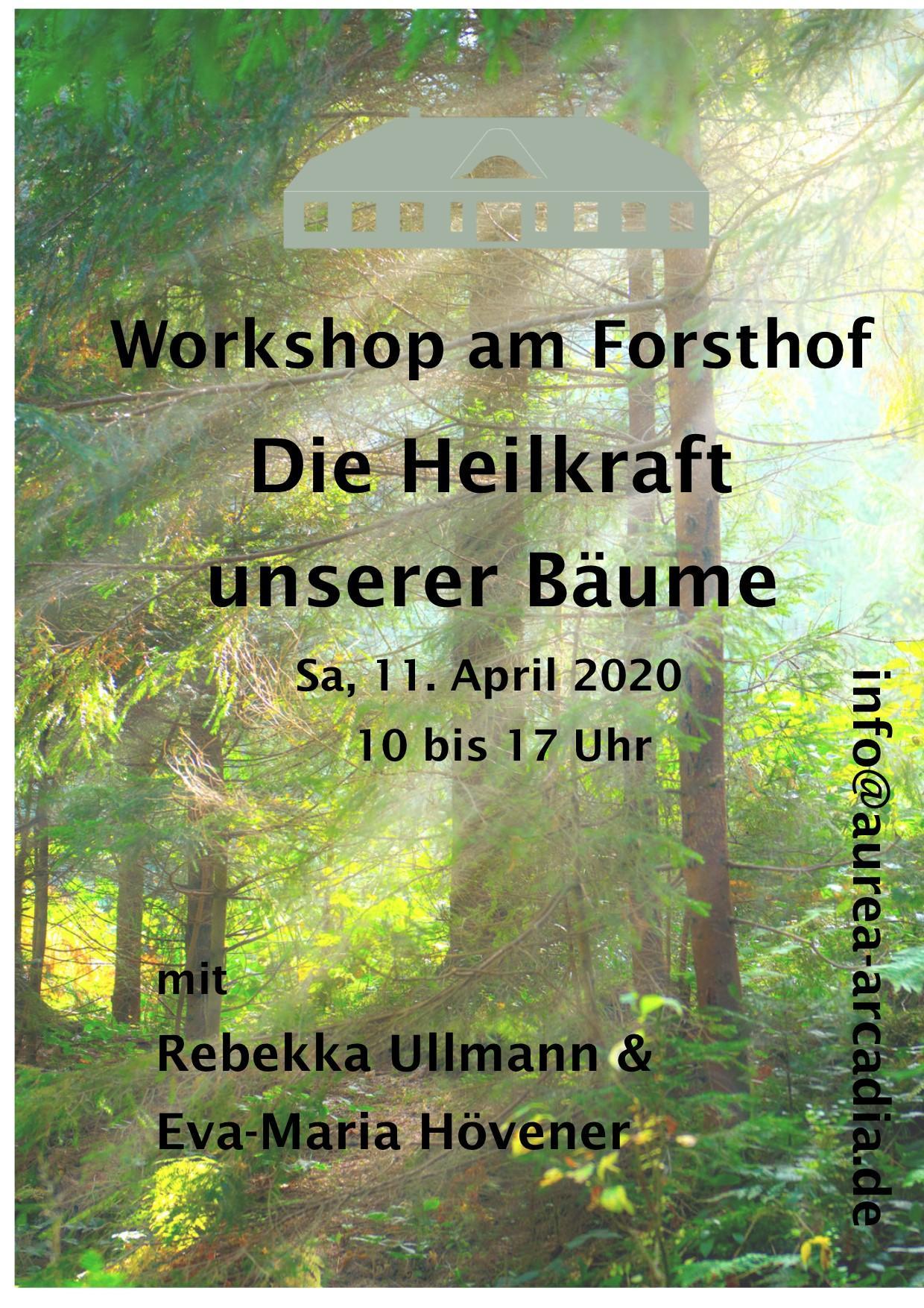 Workshop Bäume