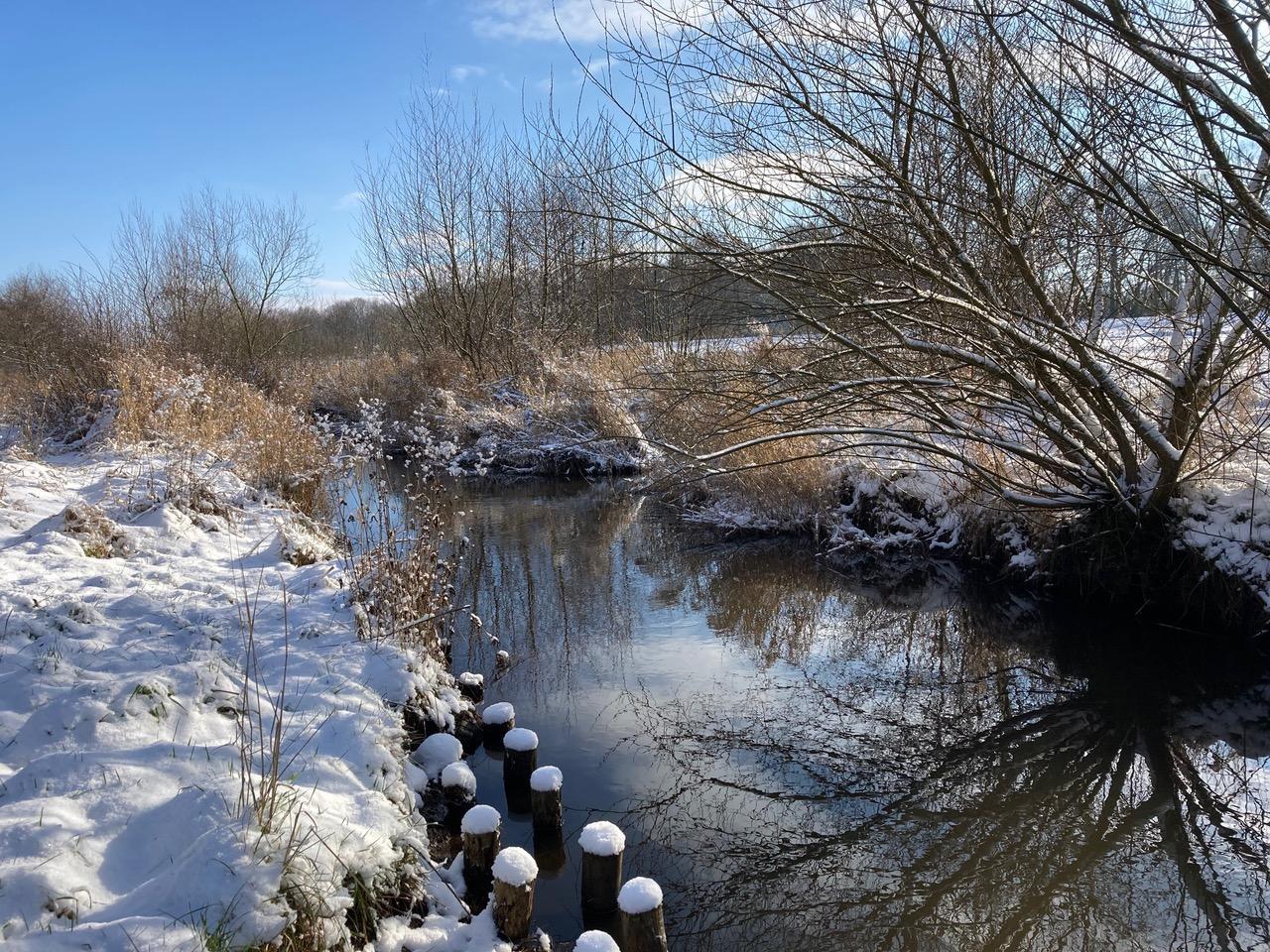Winterlandschaft an der Krückau in Langeln