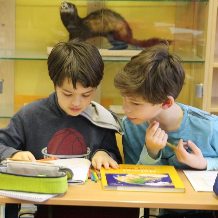 Die Wölfe beim Lernen im Unterricht
