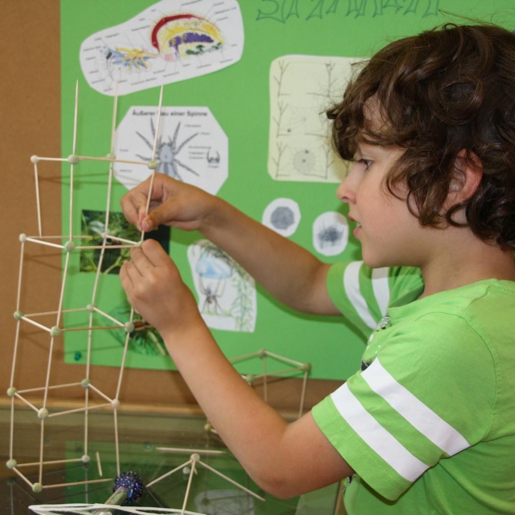 Die Biber entdecken die geometrischen Formen