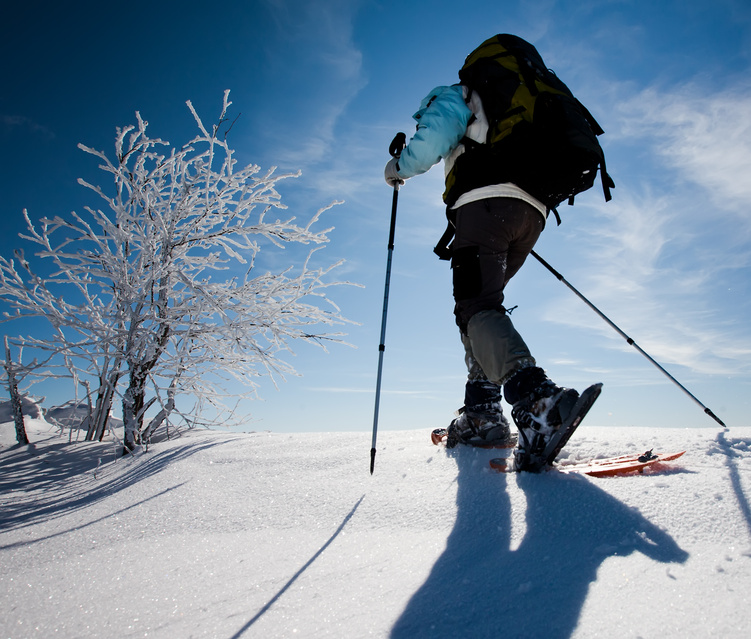 Schneeschuh-Wanderung Schwarzwald