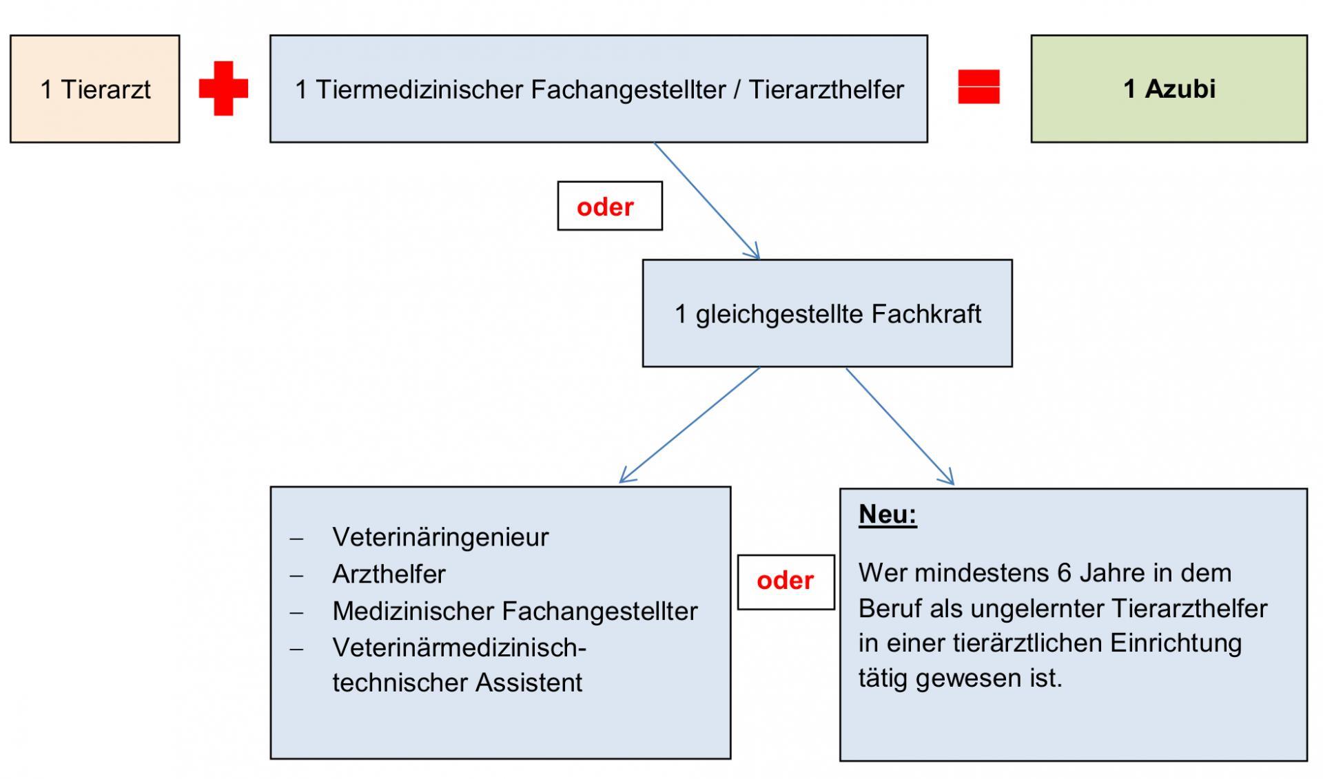 Personalschlüssel Ausbildung TFA