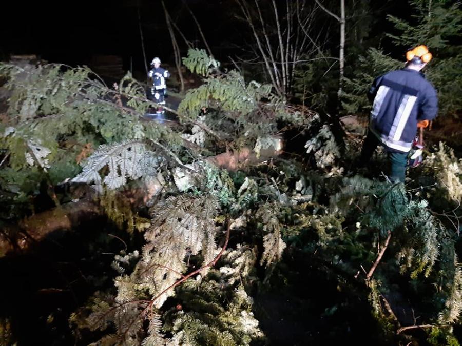 Bäume auf der Fahrbahn im Schutzbereich 02.02.2020
