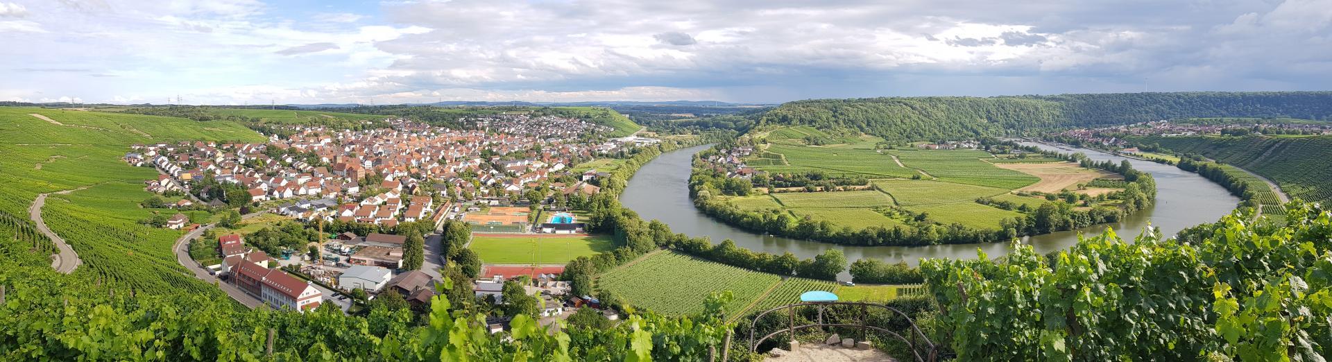 Blick auf Mundelsheim und die Neckarschlaufe