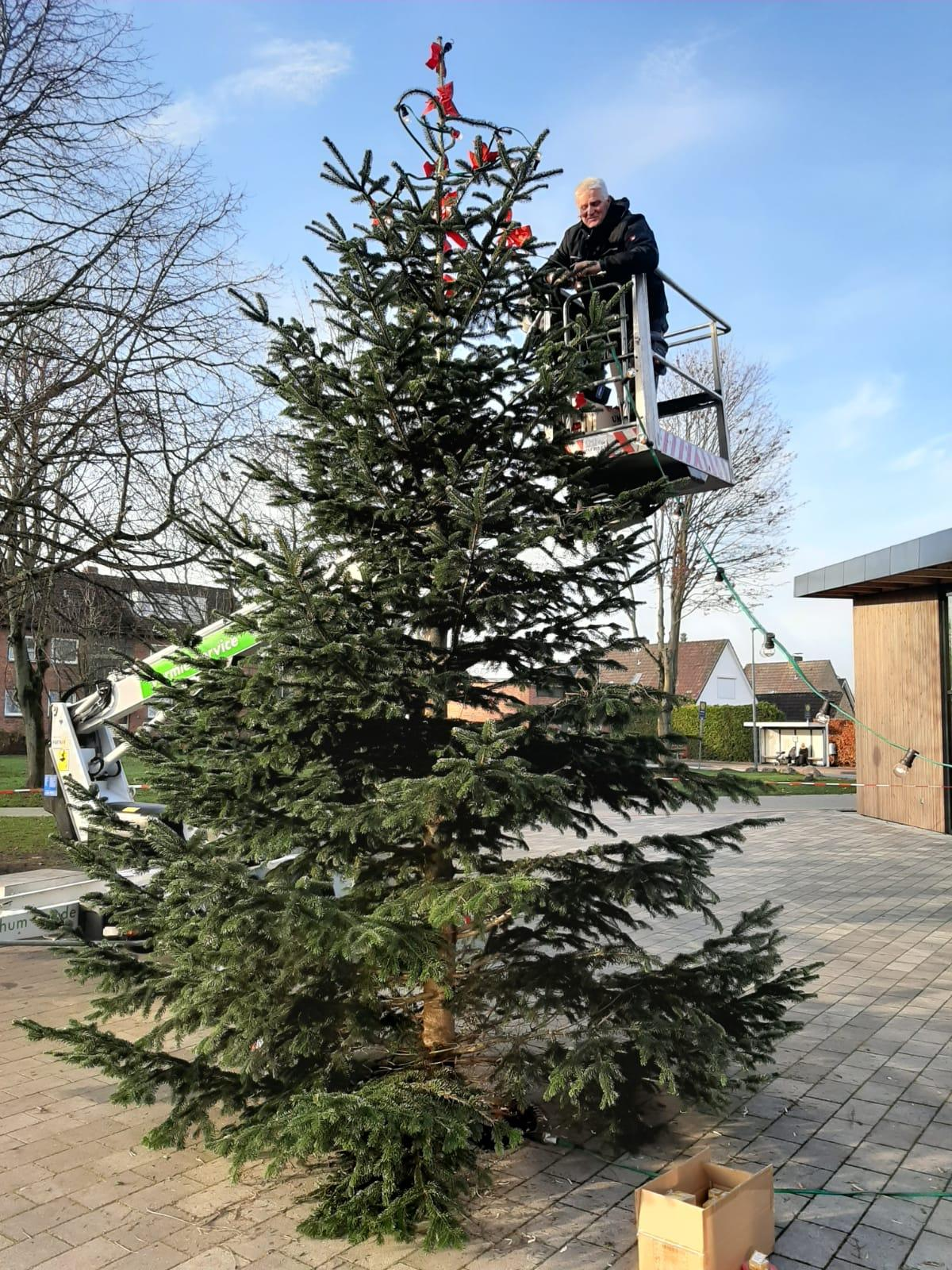 Großer Weihnachtsbaum