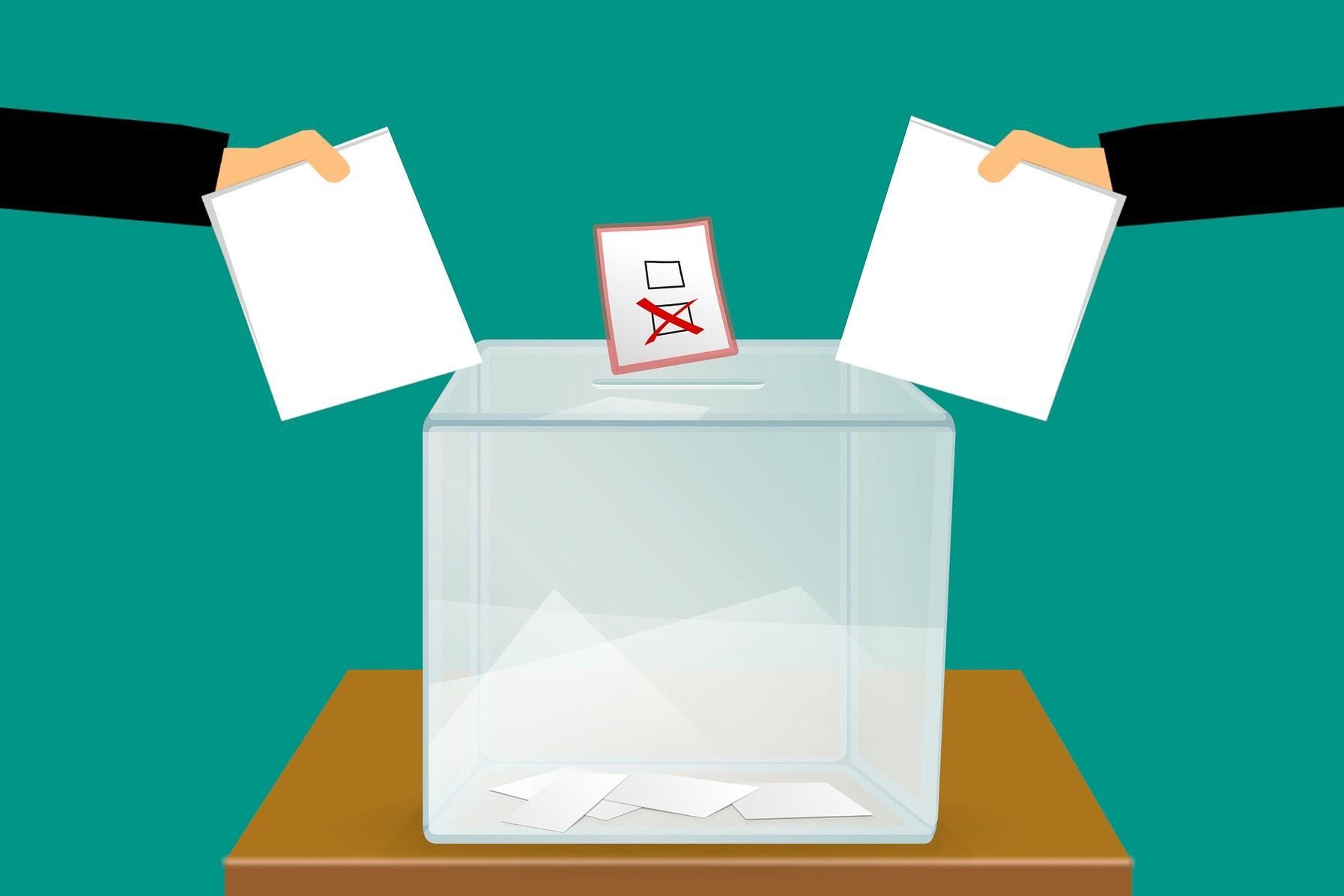 Stimmzettelabgabe, Quelle: Bild von mohamed Hassan auf Pixabay