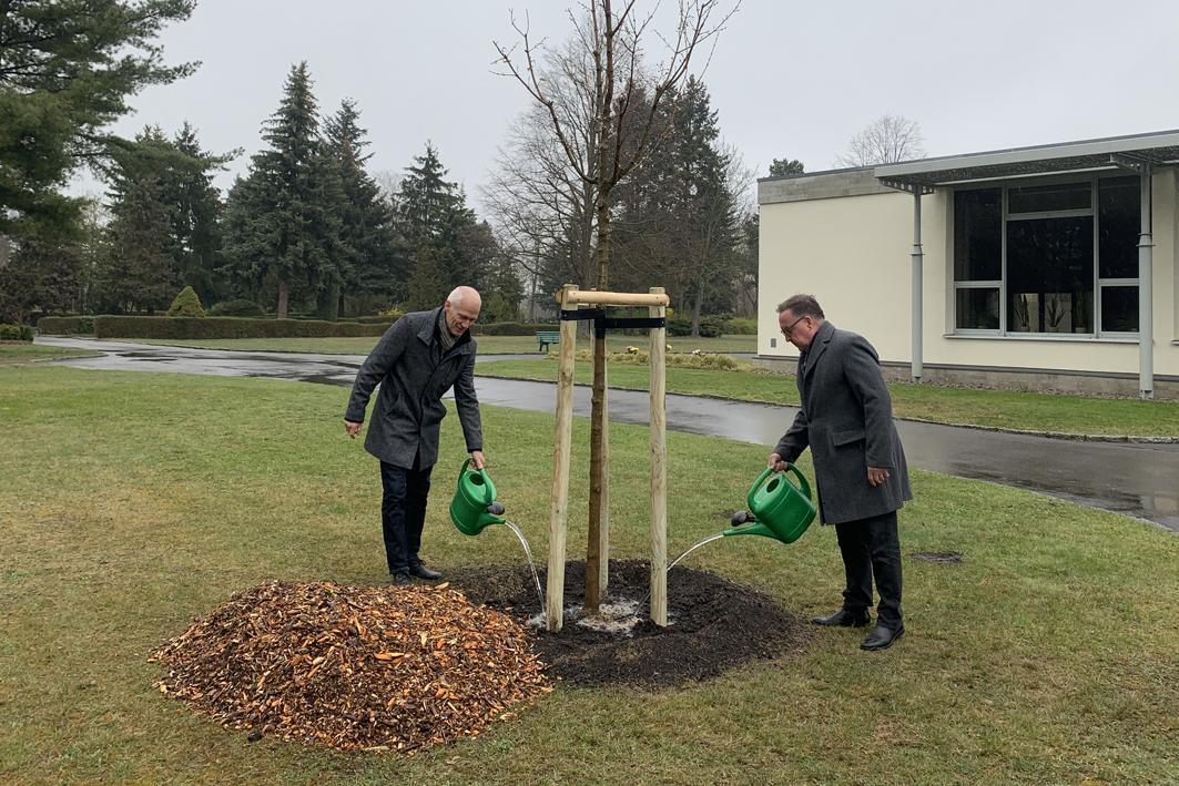 Lübbenau/Spreewald beteiligt sich am Gedenktag für die Opfer der Corona-Pandemie
