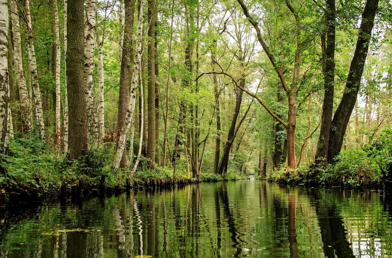 Fließ im Spreewald, Quelle: Pixabay