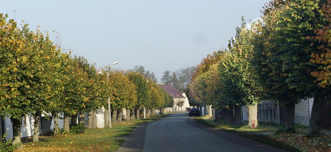 Sieversdorfer Dorfstraße herbstlich gefärbt