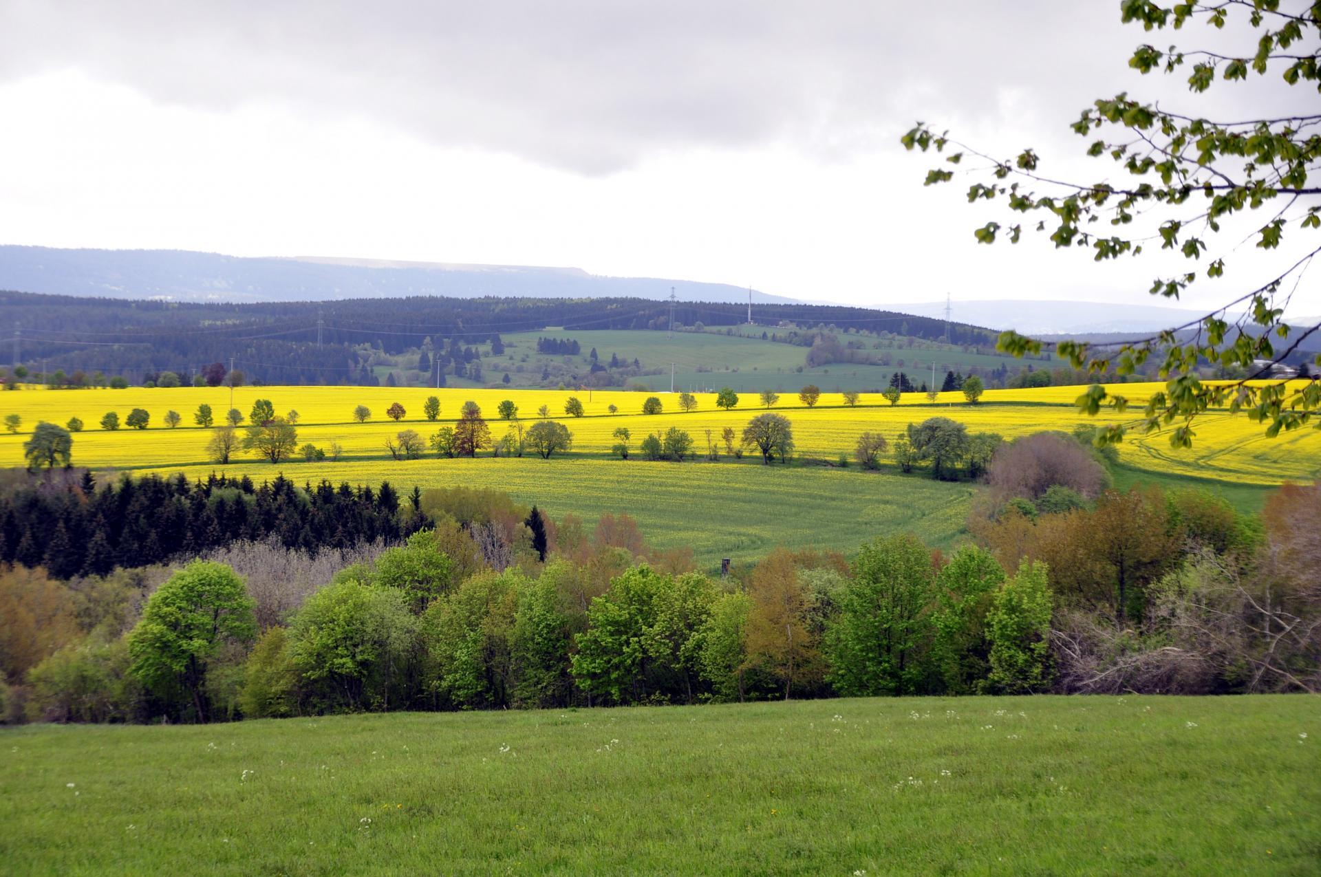 Landschaft im Olitätenland