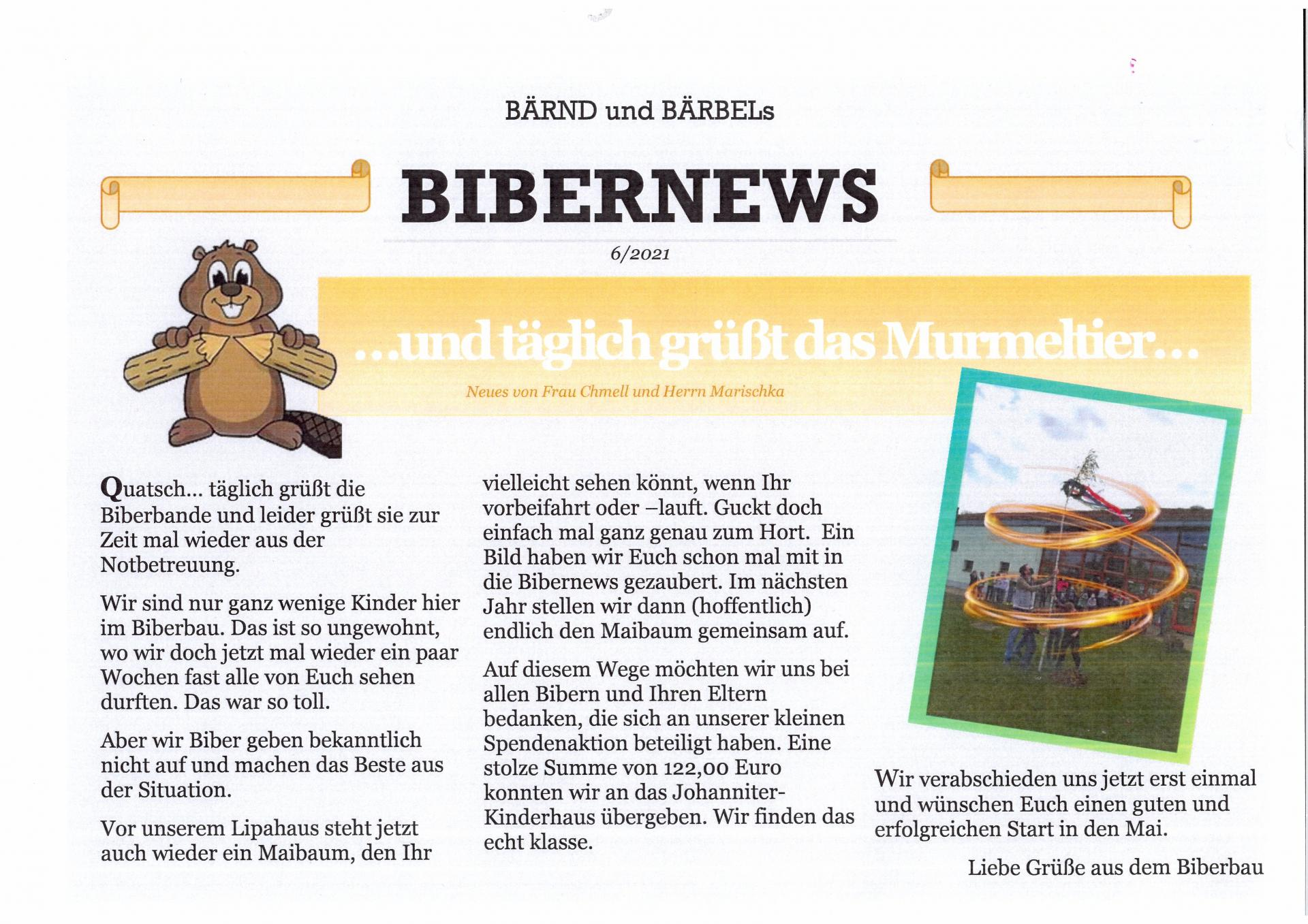 bibernews 6_0001 (2)