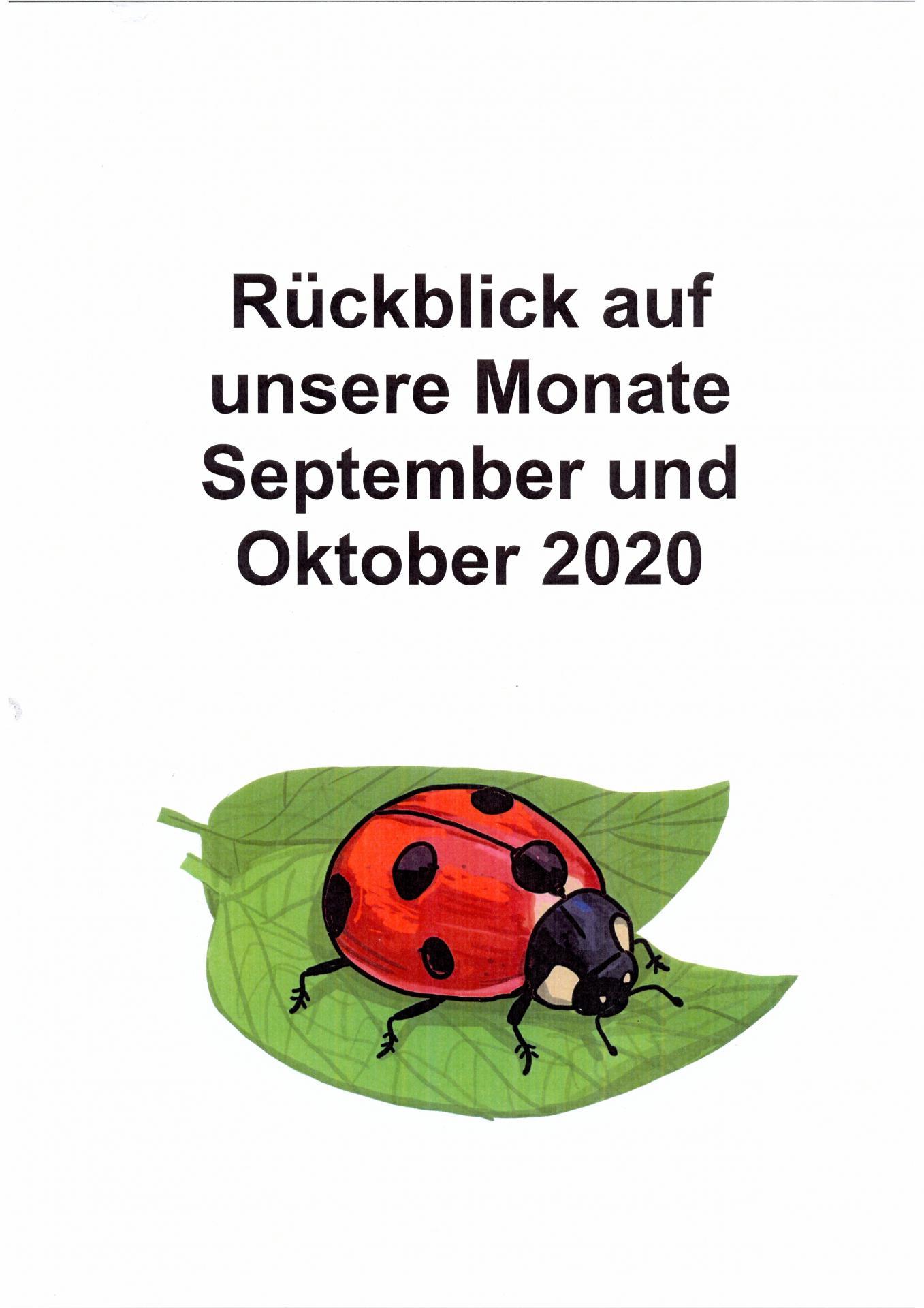 Rückblick Käfergruppe Sept. - okt. -1-